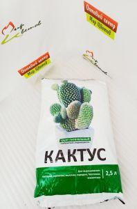 Грунт Ново-Агро для кактуса 2,5л